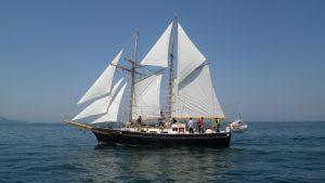 帆船Ami フルセイルトレーニング