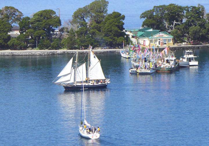 帆船Ami大瀬祭りクルーズ